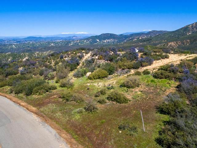 0 Magee Road, Pala, CA 92059 (#190026040) :: Bathurst Coastal Properties