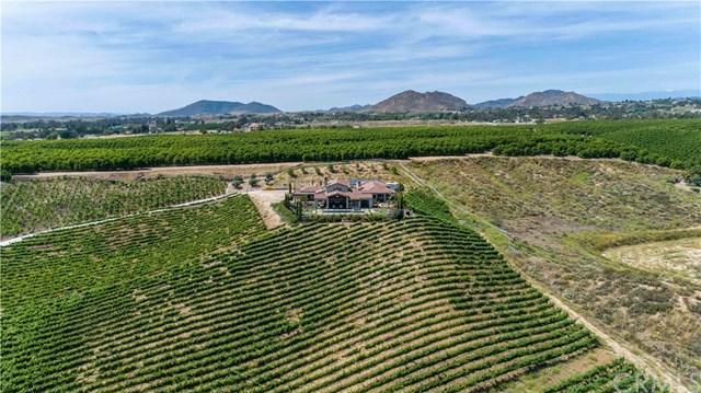 39950 De Portola Road, Temecula, CA 92592 (#SW19140129) :: California Realty Experts