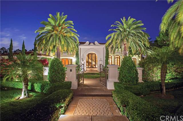33 Canyon Terrace, Newport Coast, CA 92657 (#NP19163367) :: Allison James Estates and Homes