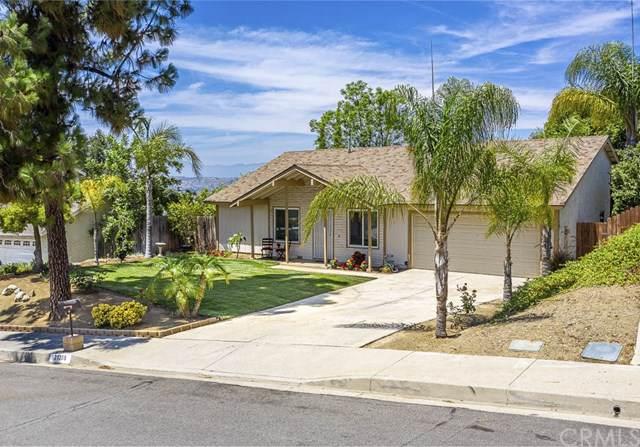 21309 Pinehill Lane, Diamond Bar, CA 91765 (#PW19180631) :: Allison James Estates and Homes