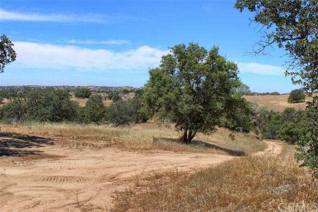 0-39.58 AC Road 607, Raymond, CA 93653 (#FR19211201) :: Sperry Residential Group