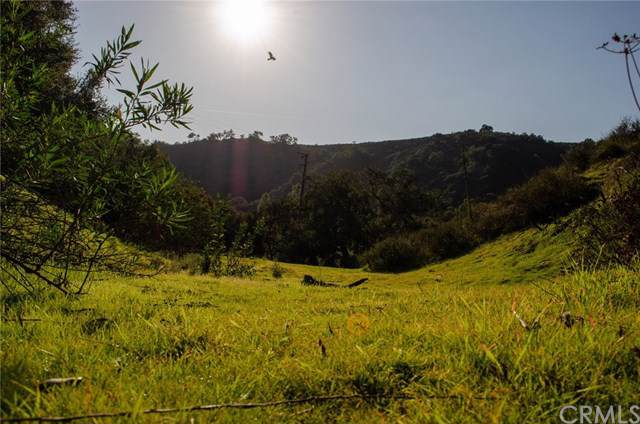 30291 Hunky Dory, Trabuco Canyon, CA 92679 (MLS #OC19221233) :: Desert Area Homes For Sale