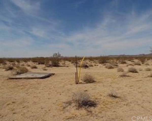 63982 Chollita Road, Joshua Tree, CA 92252 (#JT19266735) :: RE/MAX Masters