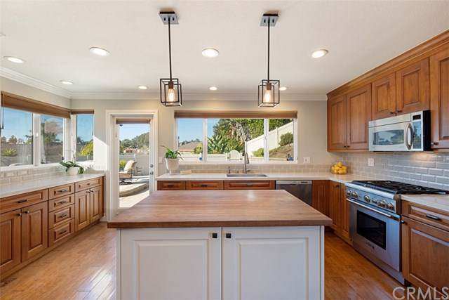 33171 Sea Lion Drive, Dana Point, CA 92629 (#OC19271198) :: Z Team OC Real Estate