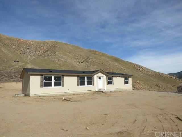 455 Lance Ave, Lebec, CA 93243 (#SR19272128) :: Z Team OC Real Estate
