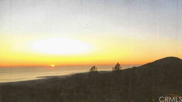 1 Rocky Butte Truck Trail, Cambria, CA  (#SP20001569) :: Sperry Residential Group