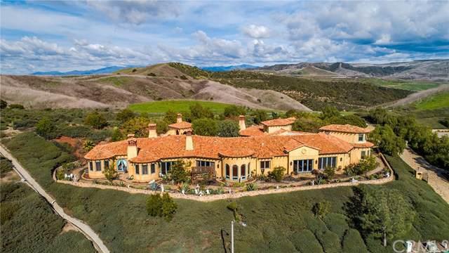 3011 Eminencia Del Norte, San Clemente, CA 92673 (#OC20010241) :: J1 Realty Group