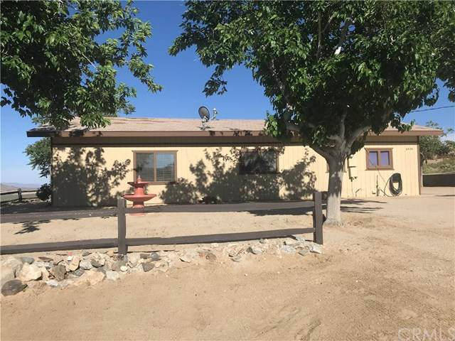 6979 White Feather Road, Joshua Tree, CA 92252 (#JT20062898) :: The Laffins Real Estate Team