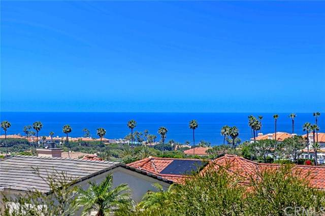 33 Gavina, Dana Point, CA 92629 (#OC20093260) :: Berkshire Hathaway HomeServices California Properties