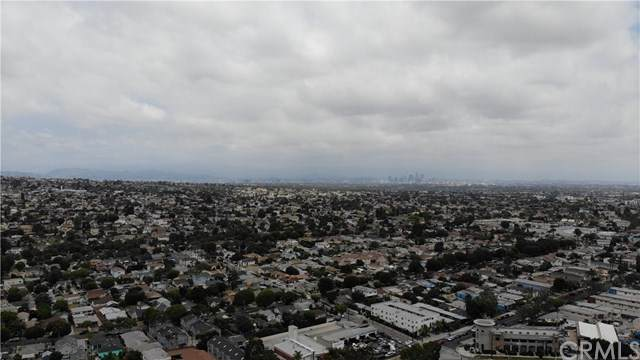 828 Edgewood Street, Inglewood, CA 90302 (#IV20120486) :: The Marelly Group | Compass