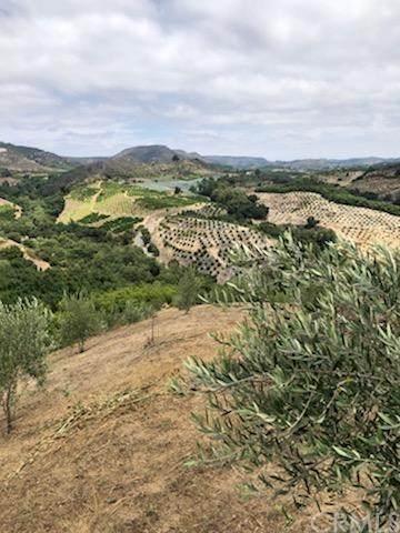 0 Buena Vista 933-170-037 Road - Photo 1
