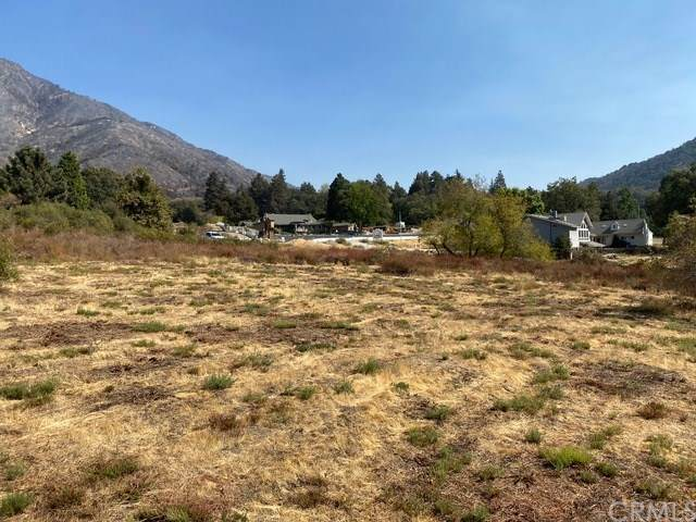 38321 Oak Glen Road, Oak Glen, CA 92399 (#EV20212394) :: The Miller Group