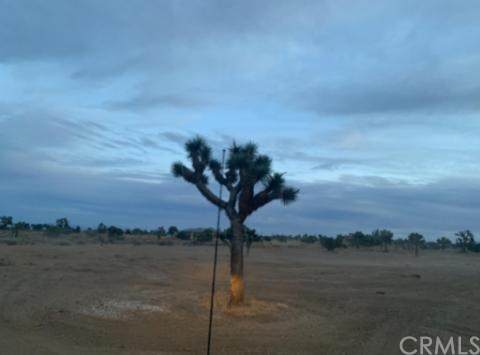0 Valencia, Phelan, CA 92371 (#CV20232829) :: Z Team OC Real Estate