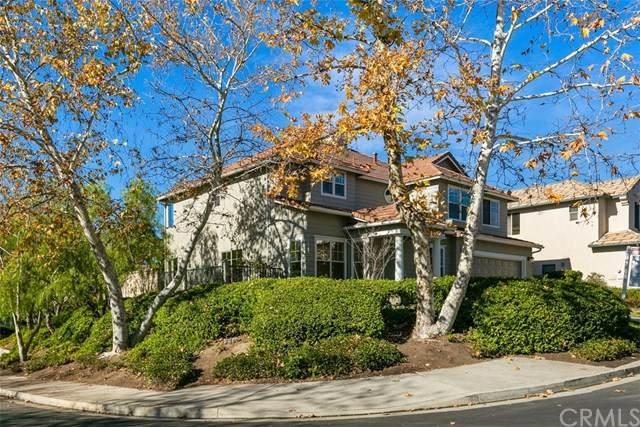 31 Creek View Road, Coto De Caza, CA 92679 (#OC20259945) :: Doherty Real Estate Group