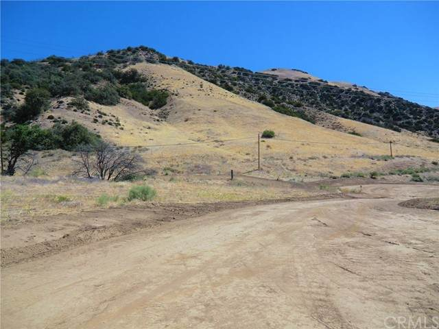 0 Golden State Frwy/ Hayride Rd. - Photo 1