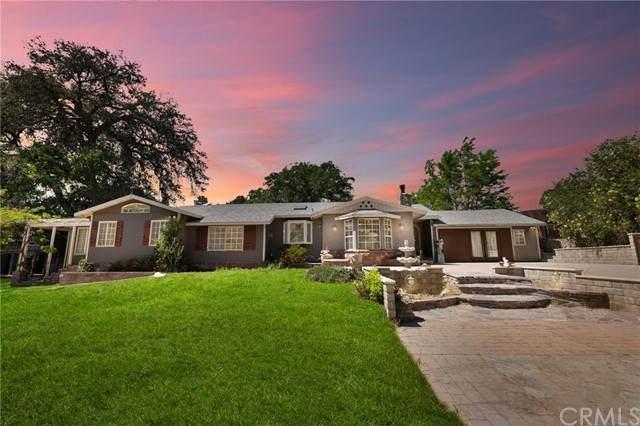13025 Sierra Hwy, Agua Dulce, CA 91390 (MLS #PW21097107) :: Desert Area Homes For Sale