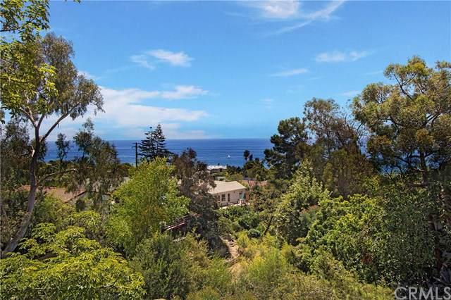 31471 Ocean View Street, Laguna Beach, CA 92651 (#OC19085003) :: Doherty Real Estate Group