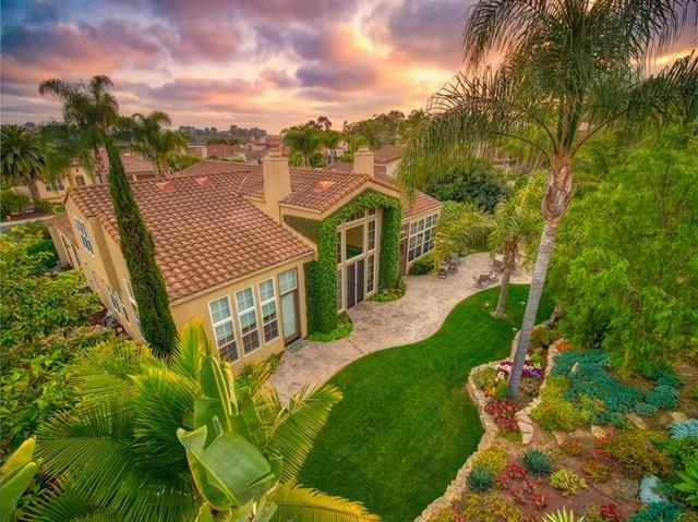 1324 Shorebird Ln, Carlsbad, CA 92011 (#190024951) :: The Houston Team | Compass