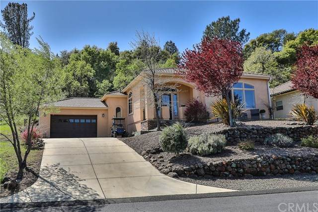 3463 Shallow Springs Terrace, Chico, CA 95928 (#SN21052446) :: The Laffins Real Estate Team