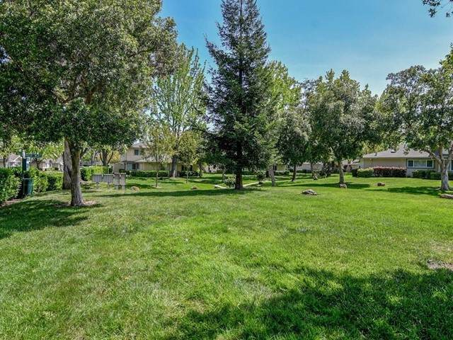 2329 Saidel Drive #1, San Jose, CA 95124 (#ML81847482) :: Berkshire Hathaway HomeServices California Properties