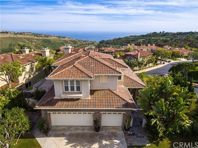 34 Coral Reef, Newport Coast, CA 92657 (#TR19136544) :: Fred Sed Group