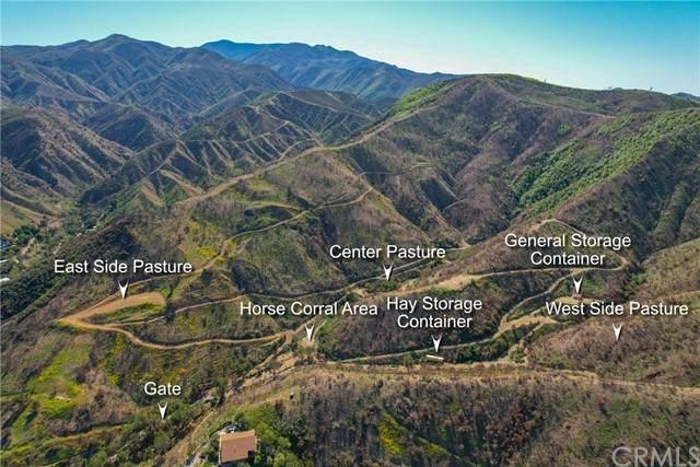 28570 Williams Canyon Road, Silverado Canyon, CA 92676 (#OC21081644) :: Swack Real Estate Group | Keller Williams Realty Central Coast
