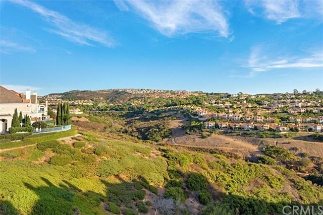 56 Chandon, Newport Coast, CA 92657 (#OC19078349) :: Allison James Estates and Homes