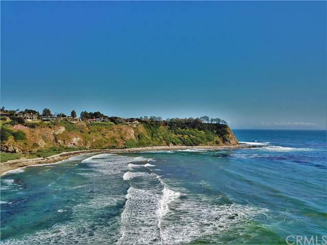 2304 Paseo Del Mar, Palos Verdes Estates, CA 90274 (#SB19106122) :: Team Tami