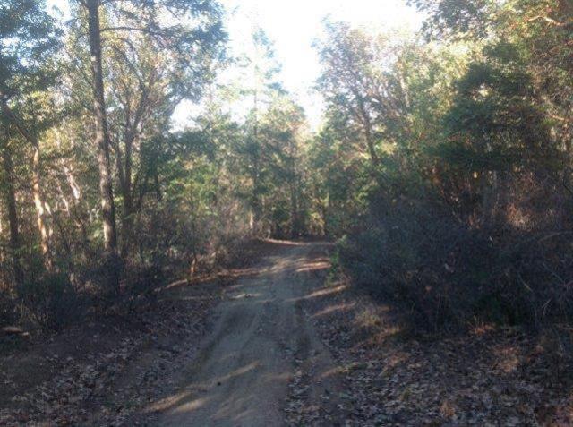 0 Kane Creek, Central Point, OR 97502 (#2948217) :: Rocket Home Finder