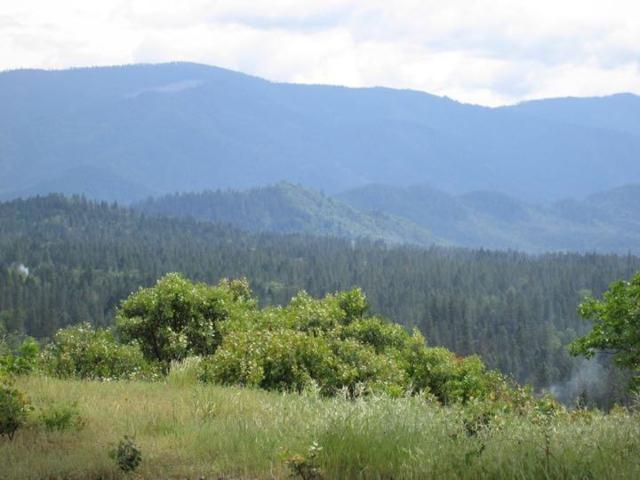 241 View Top #9, Grants Pass, OR 97527 (#2964913) :: FORD REAL ESTATE