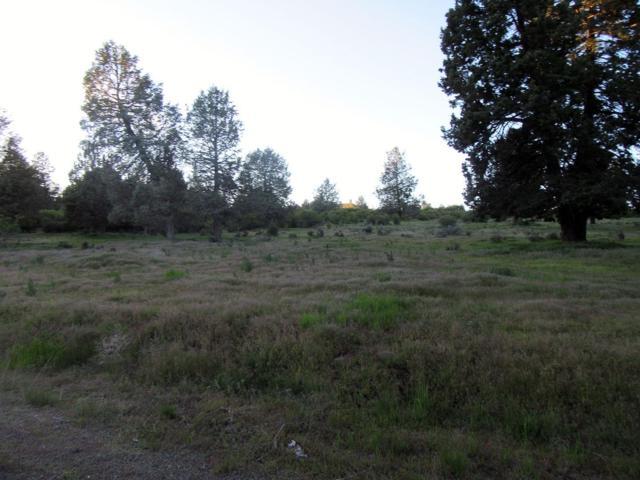 0 E Turnstone Dr. Lot 1003, Klamath Falls, OR 97601 (#2977356) :: Rocket Home Finder