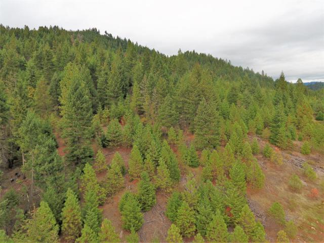 0 Elk Creek, Trail, OR 97541 (#2980056) :: FORD REAL ESTATE