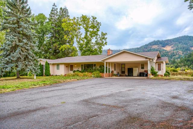 445 Cow Creek Road, Riddle, OR 97469 (#2982211) :: FORD REAL ESTATE