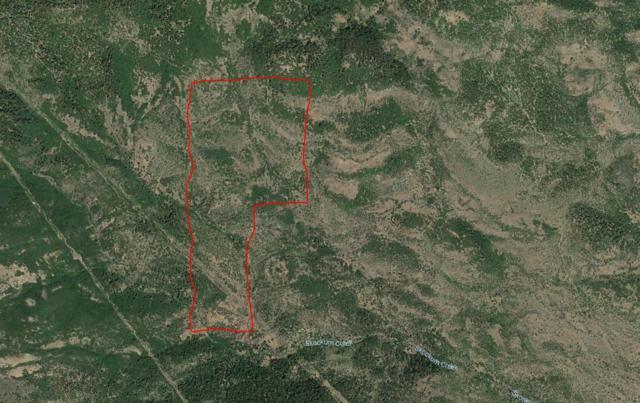 0 Soda Mountain, Ashland, OR 97520 (#2983820) :: Patie Millen Group - John L. Scott Real Estate