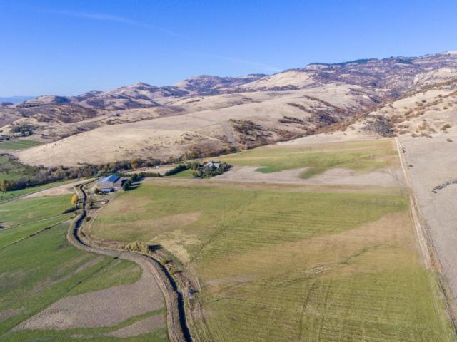 1650 Butler Creek Road, Ashland, OR 97520 (#2983828) :: Patie Millen Group - John L. Scott Real Estate