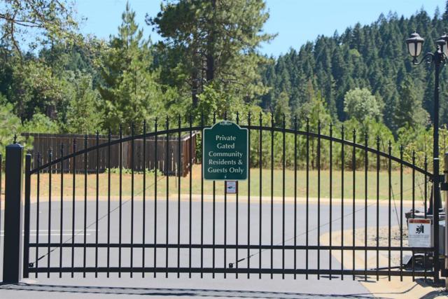 240 Pomeroy View, Cave Junction, OR 97523 (#2985007) :: Rocket Home Finder