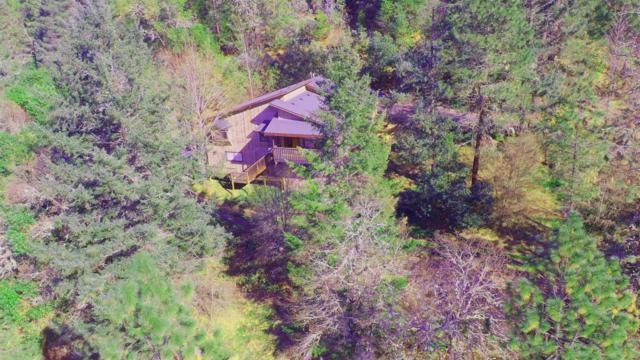 401 Grays Creek Road, Grants Pass, OR 97527 (#2986097) :: FORD REAL ESTATE