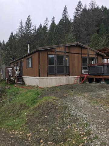 499 Elder Mill Road, Trail, OR 97541 (#2986214) :: FORD REAL ESTATE