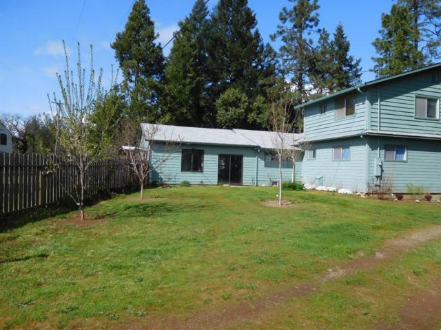 151 Patton Bar Road, Cave Junction, OR 97523 (#2986987) :: Rocket Home Finder