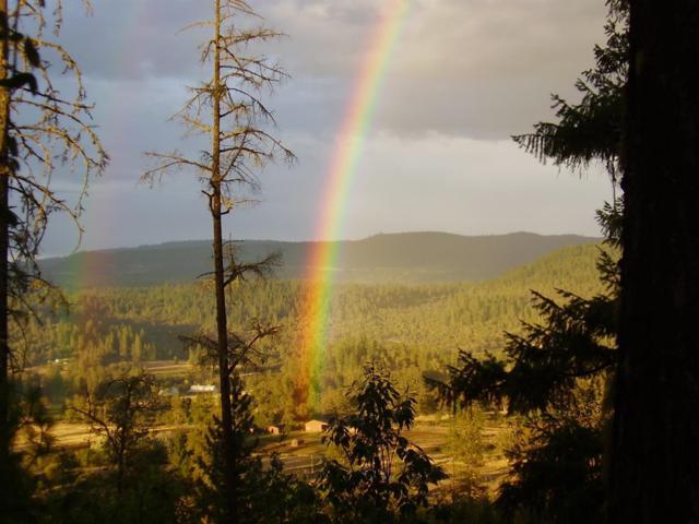 9600 Butte Falls, Eagle Point, OR 97524 (#2987050) :: Rocket Home Finder