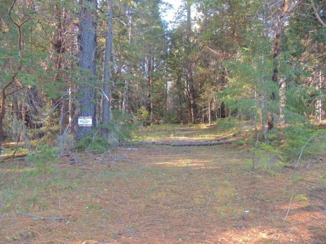 0 Pleasant Creek, Rogue River, OR 97537 (#2988906) :: Rocket Home Finder