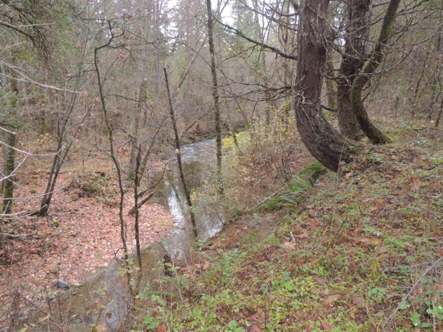0 Pleasant Creek, Rogue River, OR 97537 (#2989052) :: Rocket Home Finder