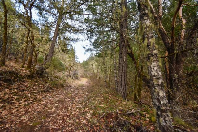 12500 Redwood, Wilderville, OR 97543 (#2990484) :: FORD REAL ESTATE