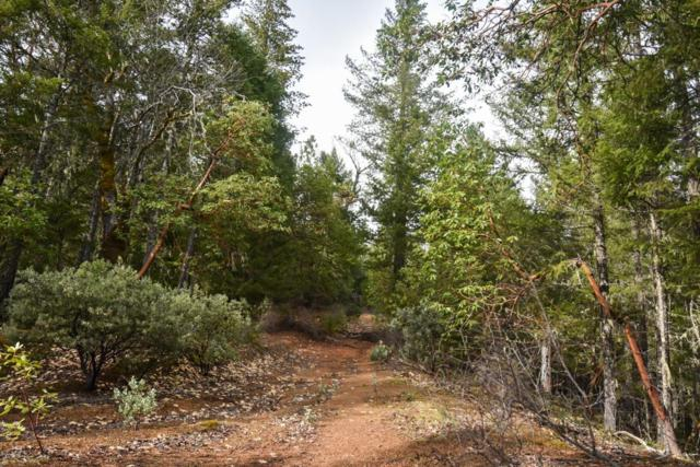 300 Taylor Creek, Wilderville, OR 97543 (#2990485) :: FORD REAL ESTATE