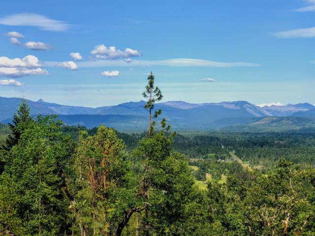 1 Hwy 62, Prospect, OR 97536 (#2990619) :: FORD REAL ESTATE