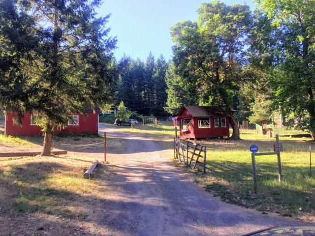 12323 E Evans Creek Road, Rogue River, OR 97537 (#2991898) :: Rocket Home Finder