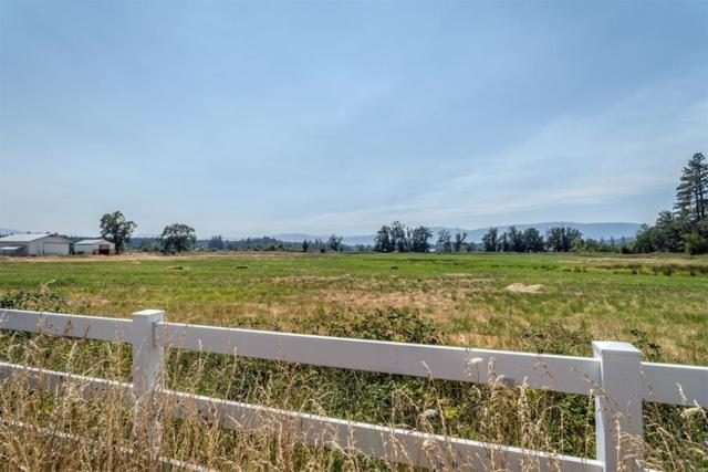 1910 White Schoolhouse Road, Cave Junction, OR 97523 (#2991936) :: FORD REAL ESTATE