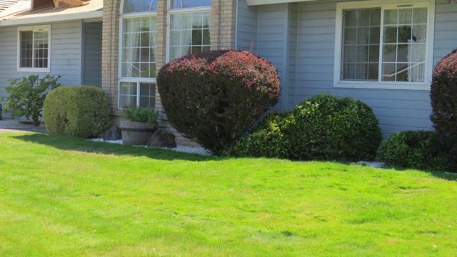 1942 Bianca Court, Medford, OR 97504 (#2992078) :: Rocket Home Finder