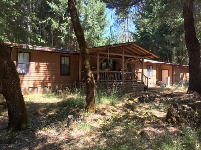 8825 Upper Deer Creek Road, Selma, OR 97538 (#2992085) :: Rocket Home Finder