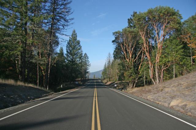 135 Mckenzie Ridge Road, Grants Pass, OR 97526 (#2992104) :: Rocket Home Finder